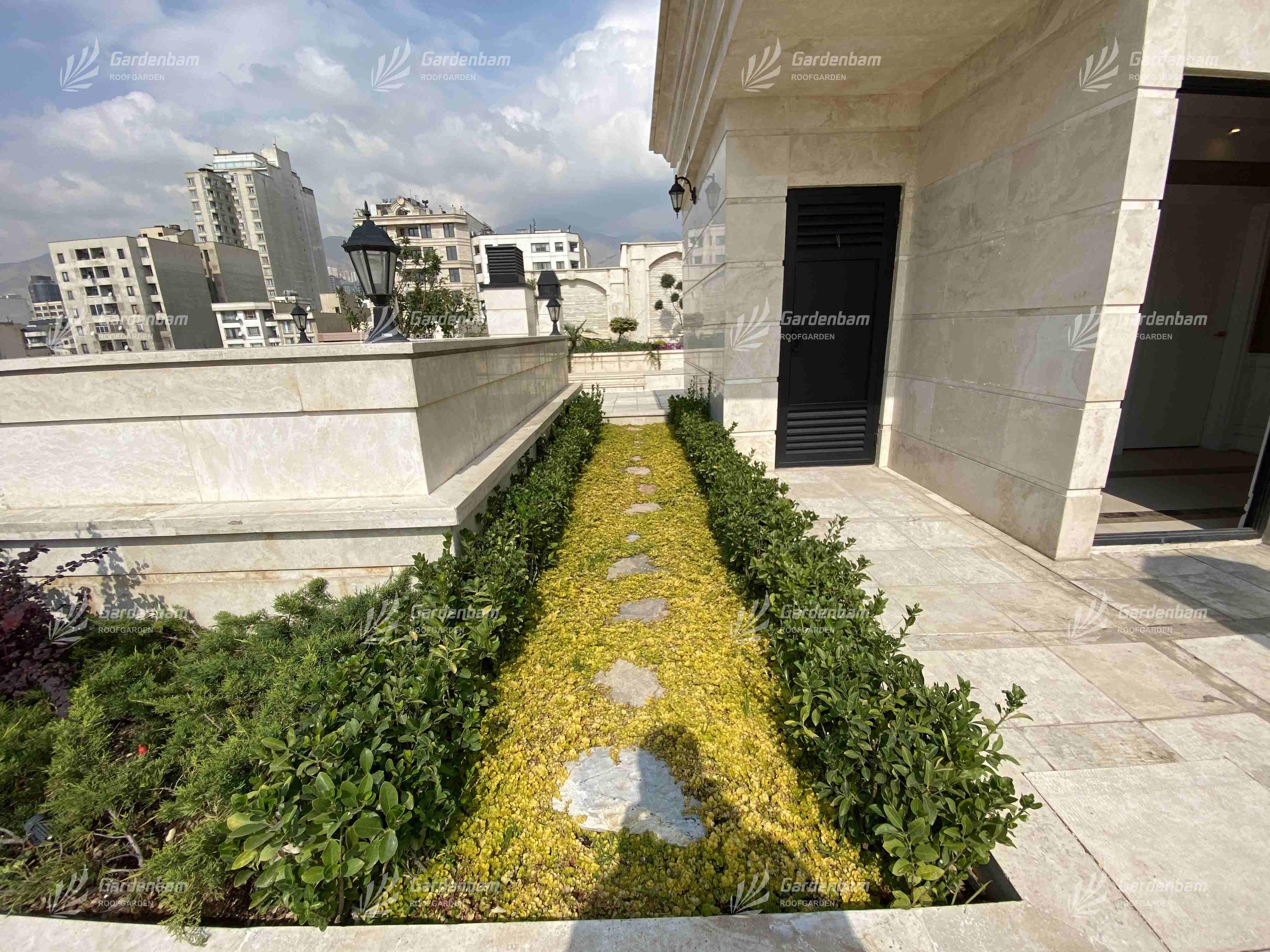 طراحی و اجرای روف گاردن  بام سبز شرکت گاردن بام- پروژه سعادت آباد