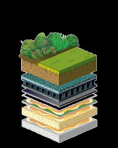 بام سبز | انواع بام سبز | روف گاردن | بام سبز | بام سبز متراکم | بام سبز نیمه متراکم |