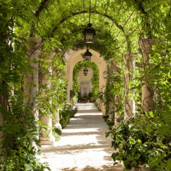 طراحی فضای سبز| کاشت و نگهداری فضای سبز| طراحی و اجرای فضای سبز|محوطه سازی|طراحی و اجرای تخصصی گاردن بام
