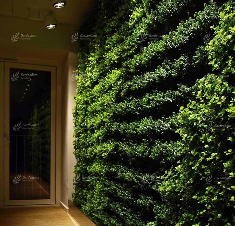 دیوارسبز | گرین وال | گاردن بام | مشاور و مجری دیوارسبز و بام سبز | محوطه سازی (لنداسکیپ)