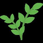 مجری روف گاردن  شرکت مجری روف گاردن   مجری بام سبز در تهران   طراحی و اجرای تخصصی بام سبز   اجرای روف گاردن   طراحی و اجرای روف گاردن   متخصص روف گاردن   گاردن بام   شرکت گاردن بام   اجرای روف   اجرای آلاچیق   اجرای آبنما   سیستم آبیاری هوشمند  